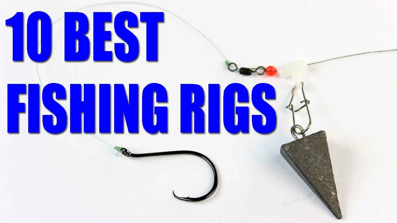 Fishing rigs bait fishing rigs for catfish bass trout for Best bass fishing rigs