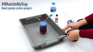 #WhatsInMyTray - Science Project - Heart Pump Demonstration