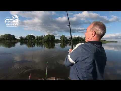 БОЛЬШОЙ УЛОВ. VLOG: Красота реки Неман. Судак. Угорь. Июнь 2018.