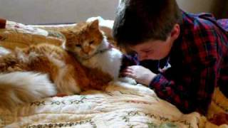 Shocking Reunion of Boy and His Missing 11 Yr Old Cat