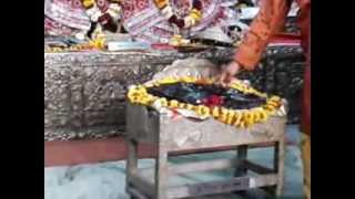 radha damodar temple vrindavan dham ( girigovardhan darshaN)