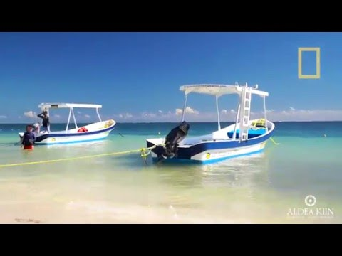 Puerto Morelos: el secreto mejor guardado de la Riviera Maya- Capitulo 1