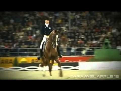 Equestrian: ~Hall of Fame~