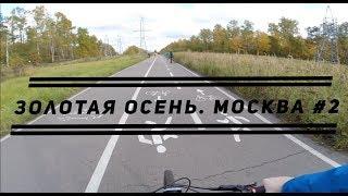 Золотая осень Москва 2