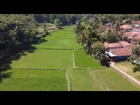 Download Desa cijenuk kecamatan cipongkor