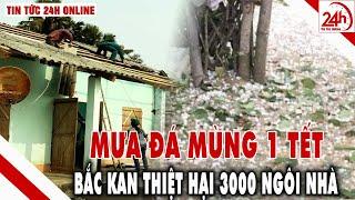 Bắc Kạn: mưa đá hơn 3.000 ngôi nhà bị tàn phá | Tin tức Việt nam mới nhất hôm nay | Tin tức 24h