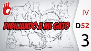 Hacer estudios de gatos, Desafío 52. nº3 - Dibujar Bien