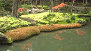 Japanese Gardens - Beautiful Moss Gardens - Gorgeous Gardens - Gardens