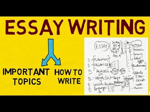 151 essay pdf