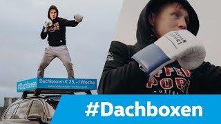 Dachboxen |Volkswagen Automobile Hamburg