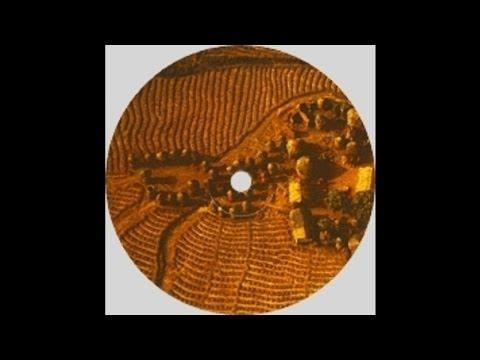Solar House | Got 2 B U | Large Music (2001)
