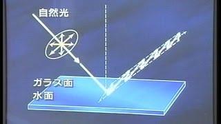 物理331G 物理22  2005偏光板を2枚重ねて振動方向の変化,光が横波であること,反射光が除去できること,空の光が偏光であること確認複眼の話も