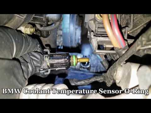 BMW Coolant Leak - Temp Sensor O-Ring Fix - YouTube