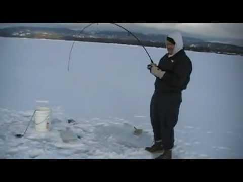 Laker Fishing McCall Idaho Feb 11, 2012