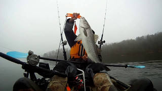 Top water striped bass caught from Native watercraft Slayer 14.5