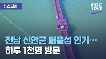 [뉴스터치] 전남 신안군 퍼플섬 인기…하루 1천명 방문 (2020.11.16/뉴스투데이/MBC)