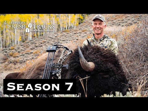 I Shot A Bison With My Bow! - Utah Archery Bison | (Amazon Episode)