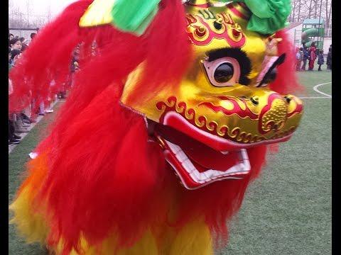Chinese New Year Lion Dance 2016, Beijing