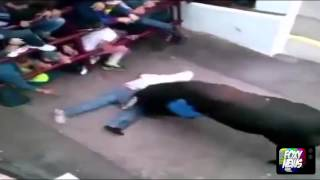 Guy Plays Dead But The Bull Doesn