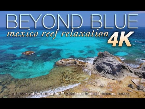 """BEYOND BLUE"" 4K Mexico Reef Relaxation Nature Relaxation™ Video 1 HR UHD"