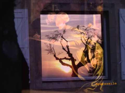 Sarah Connolly: Frauenliebe und -leben by Schumann