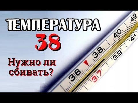 Температура 38 ничего не болит у взрослого