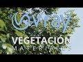Materiales De Vegetación En V Ray mp3