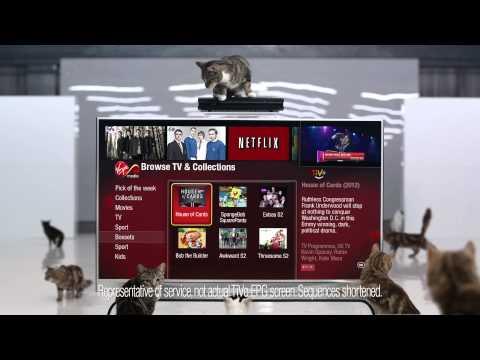 Virgin Media David Tennant TiVo Netflix Cat Ad