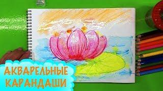 лОТОС цветок АКВАРЕЛЬНЫМИ карандашами ПРОСТО