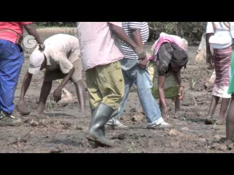 Adapting to climate change in Eastern and Southern Africa