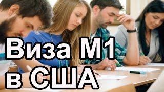 М 1 виза в США. Учеба в Америке. Курсы и специальности.