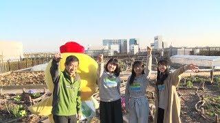 中島早貴とこぶしファクトリー野村みな美と和田桜子の3人が都心で行え...