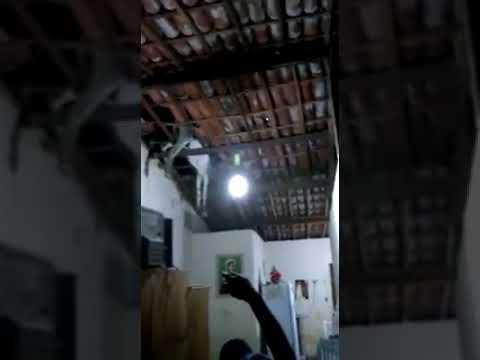 Vídeo: Jumento sobe em telhado e cai dentro da casa do dono