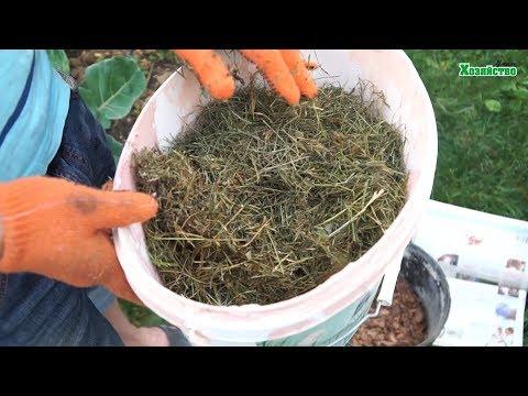 Вопрос: Можно ли использовать в качестве мульчи на грядках листву можжевельника?