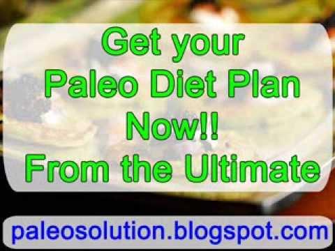 paleo-diet-plan---paleo-recipe-book