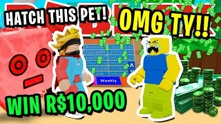 FIRST PLAYER TO HATCH THIS *SECRET* PET WINS R$10,000 IN ROBLOX BUBBLEGUM SIMULATOR!!