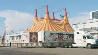 Коронавирус и Цирк на Колёсах