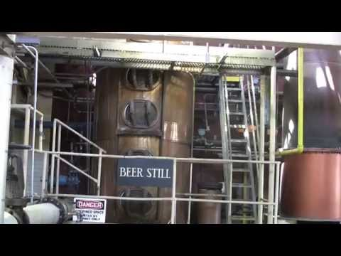 Kentucky Bourbon Trail - Woodford Reserve, Buffalo Trace, Four Roses & Wild Turkey Distilleries
