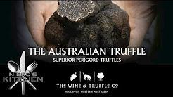 Truffle Hunting - Truffle & Wine Co Manjimup