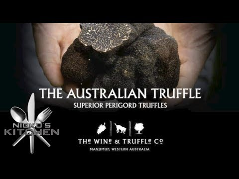 Truffle Hunting - Truffle & Wine Co Manjimup