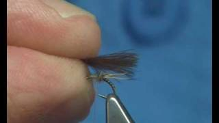 Tying a MayFly/Caddis Emerger by Davie McPhail.
