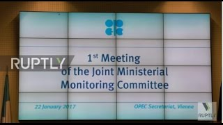 Austria  OPEC and non OPEC energy ministers vow to cut oil output