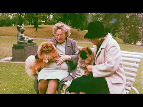 Hundre nye hunder hver dag, 1974