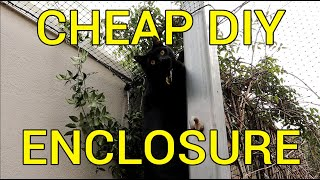 How to Build a Massive and Cheap Cat Enclosure with Basic Tools   DIY Tutorial