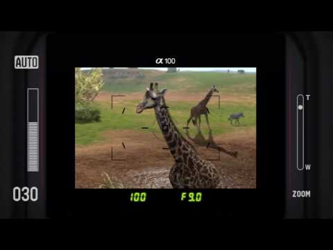 Afrika HD Video Review