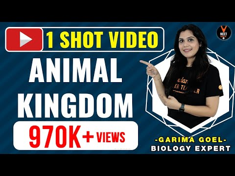 Animal Kingdom Class 11 One Shot Video In Hindi   NEET 2020 Preparation   NEET Biology   Garima Goel
