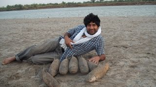 Fishing In Pakistan By KhanGroup 5(2014) 5 Kg Rohu
