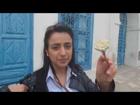 ADP Tunisia Tour