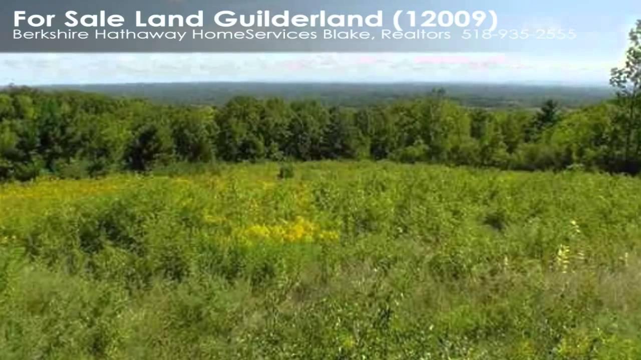 Download 00 Leesome Ln Guilderland NY 12009 Ryan Clark $125000
