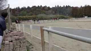 ただ馬を眺めるだけの動画も今日は一味違う!? 馬場のA2経路を踏む主犯...